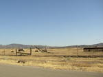 Carrizo Plain N.M (2).jpg