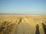 Carrizo Plain N.M (8).jpg